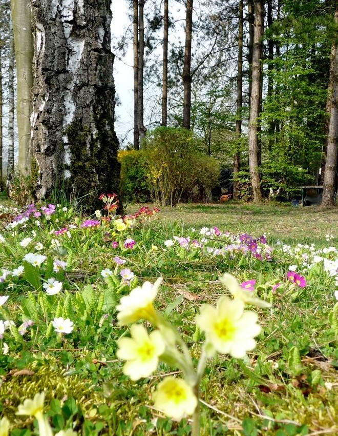 Hop là, mars est derrière nous, vive le 1er avril !