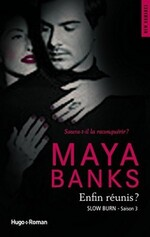 Chronique Slow burn tome 3 de Maya Banks