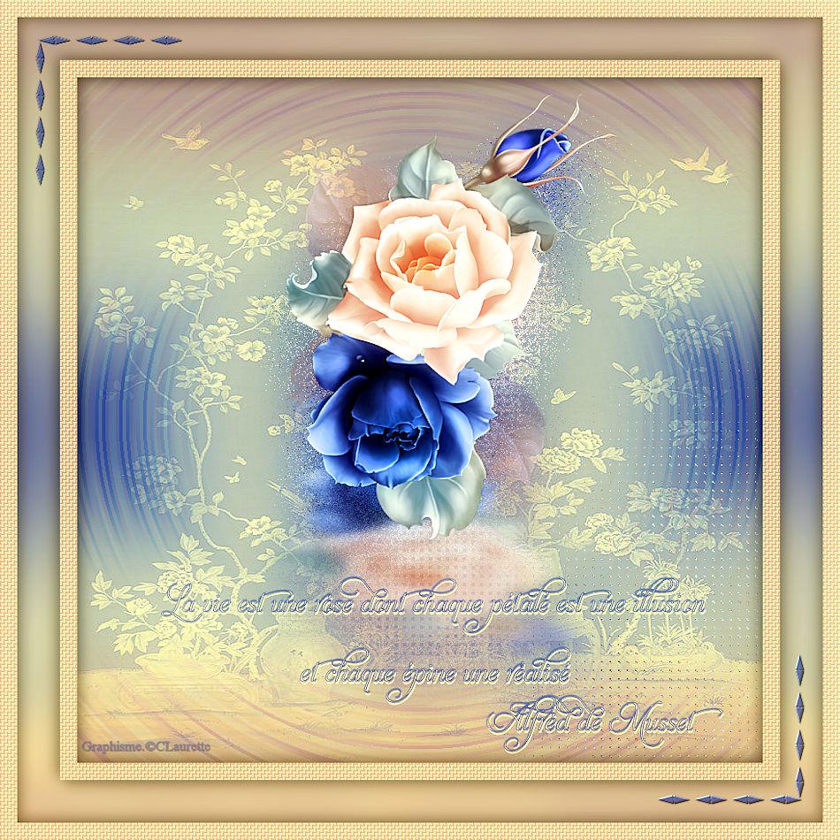 La rose de franie-margot
