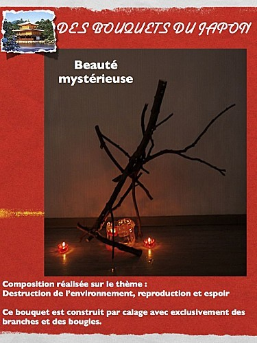 beaut- myst-rieuse.003