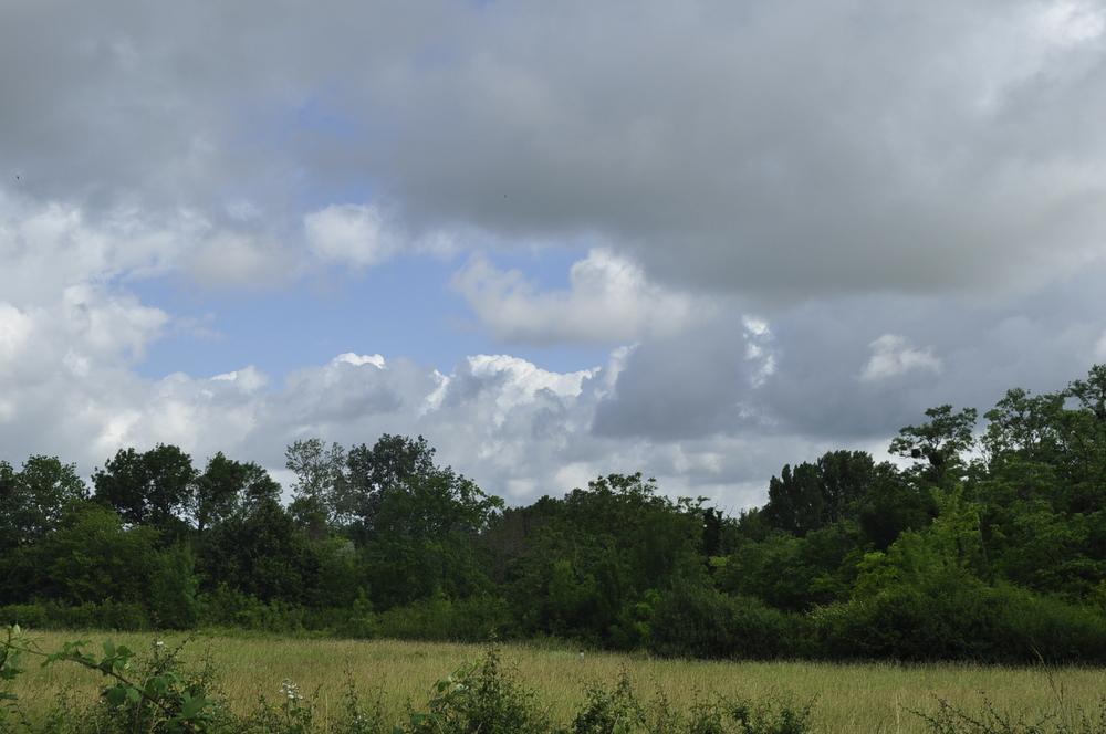HUm... ces nuages