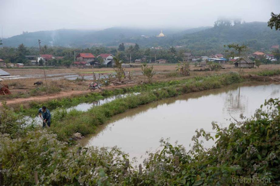 Houana - Luang Namtha -  Irrigation