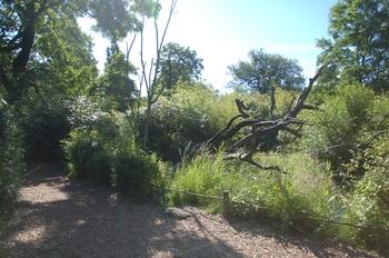 Zoo Duisburg 2012 594