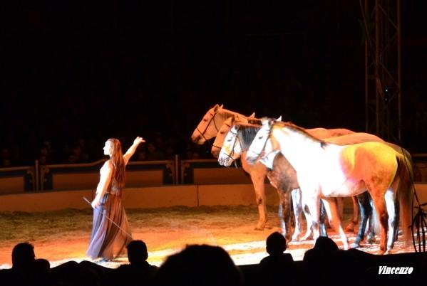 Cirque chevaux