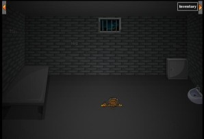 Turkey on jail