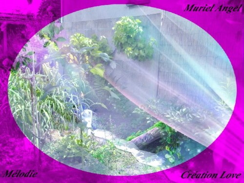 jardin-voile-MA.JPG