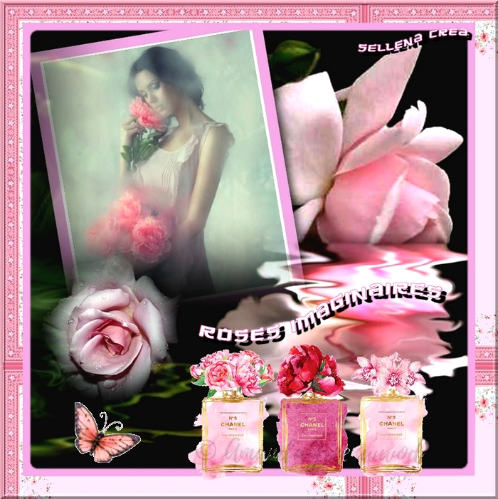 **Roses Imaginaires**Cartes