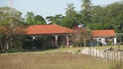 Pantanalisimo