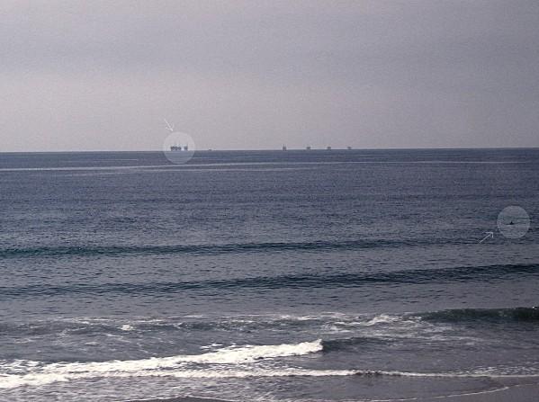 Côte Californienne dauphin et plateformes
