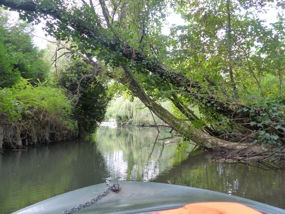 Amiens et ses Hortillonnages (2)