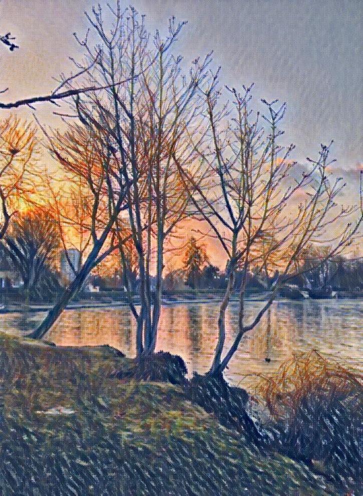 Calendrier 2017 de Philippe sur les arbres