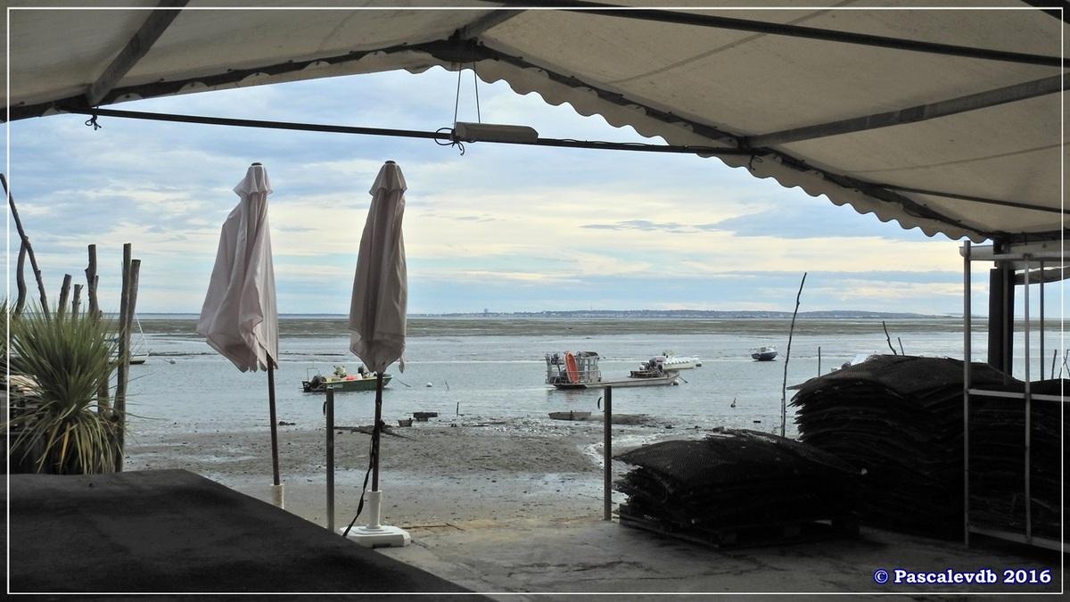 Balade à Claouey sur la presqu'île du Cap Ferret - Octobre 2016 - 5/10