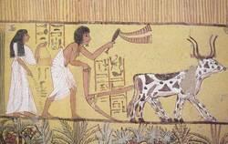 L'Egypte préhistorique et prédynastique