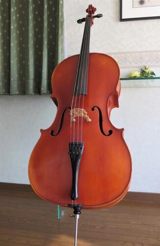 On m'a donné un violoncelle