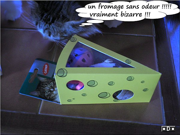 0fromage-cent-odeur.jpg