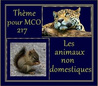 """- Thème pour Musique à coeur ouvert 217 - """"Les animaux non domestiques"""""""