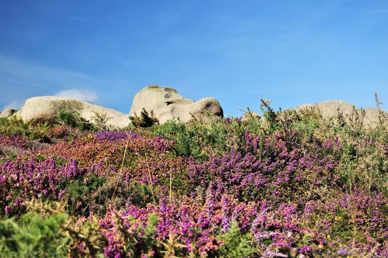 2016.08.13 Côte Granit Rose, Pointe Pors Hir, région Bretagne (2)