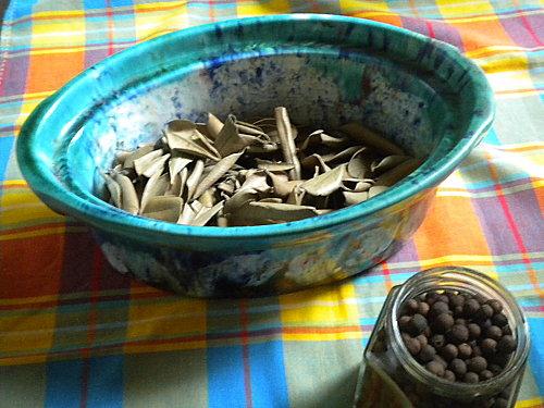 Feuilles graines de bois d'Inde 001