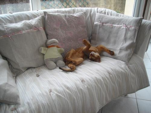 Le contorsionniste :