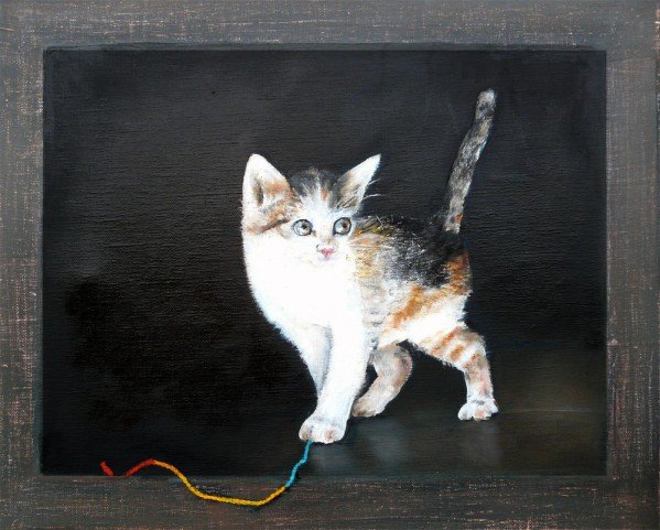 chaton--.jpg