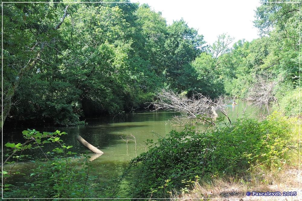 Du pont de l'Eyga aux rives de la Leyre - Août 2015 - 3/6