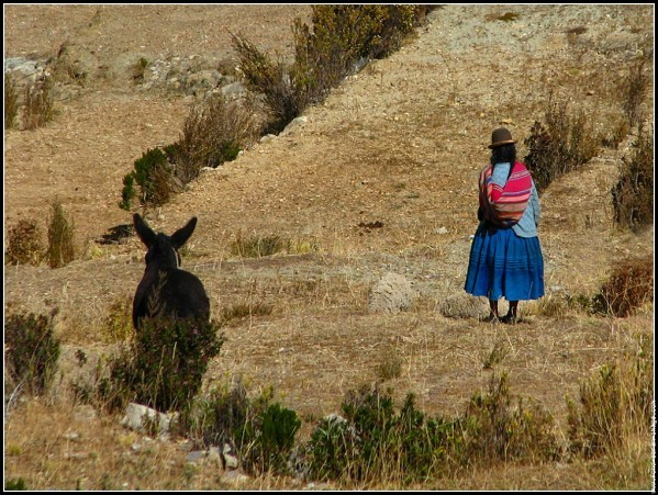 galerie-membre-bolivie-titicaca-02.jpg