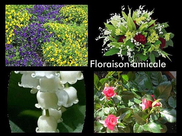 collage_2012-05-01_17-00-17.jpg