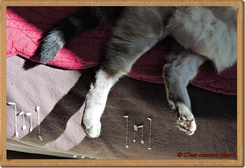Equilibre sur bord de canapé