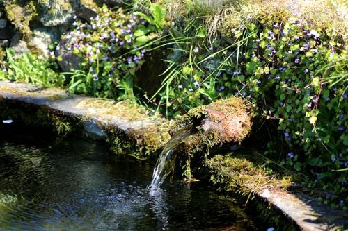 Les Jardins d'Aywiers - Printemps 2018