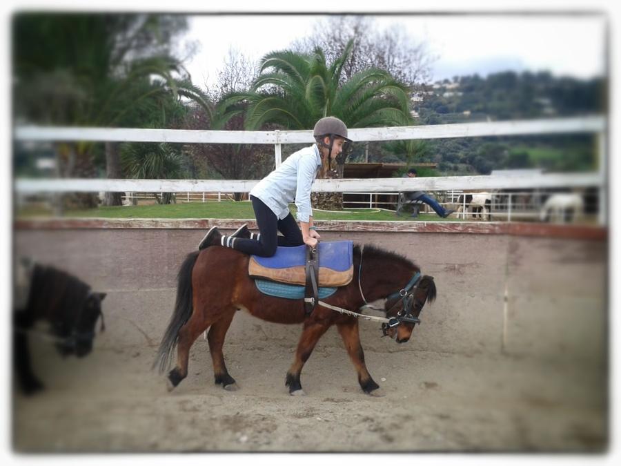 Journée à l'équitation!!!!!!