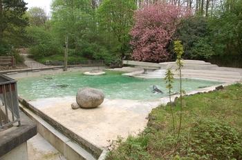 Zoo Osnabruck d50 2012 124