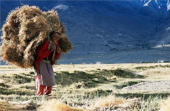 Les femmes et enfants du Tibet