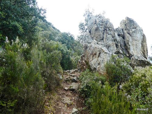 Le roc de Las Medes