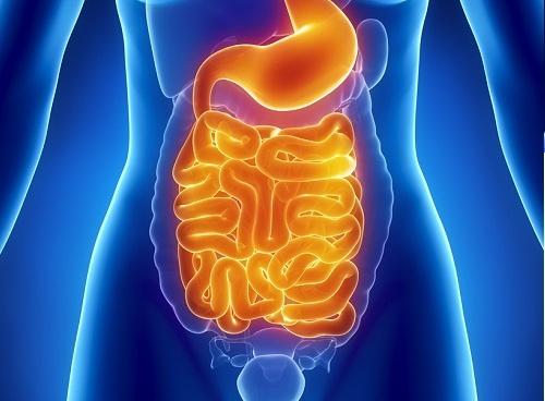 Comment faire un nettoyage intestinal chez soi ?