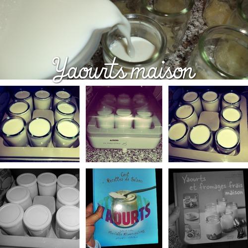 Coussinet verveine pour Poussette et yaourts maison