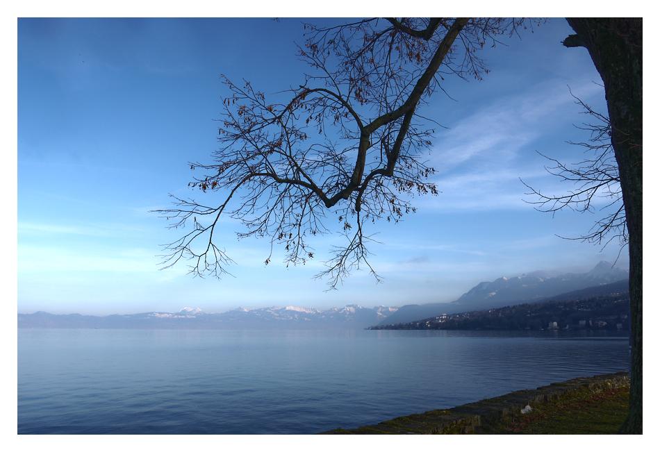 Au bord du lac Leman
