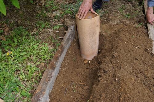 Recyclage de nos tuiles pour la culture des carottes.