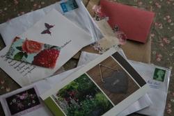 Bal des enveloppes dans la boîte aux lettres