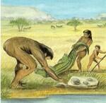 LA PREHISTOIRE - Homo habilis