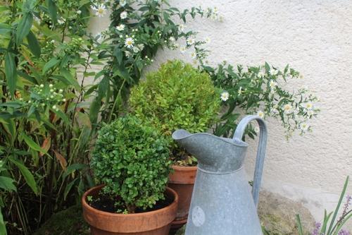 Instant jardin en ce 1er octobre