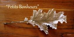 Fin d'hiver en Hte Provence