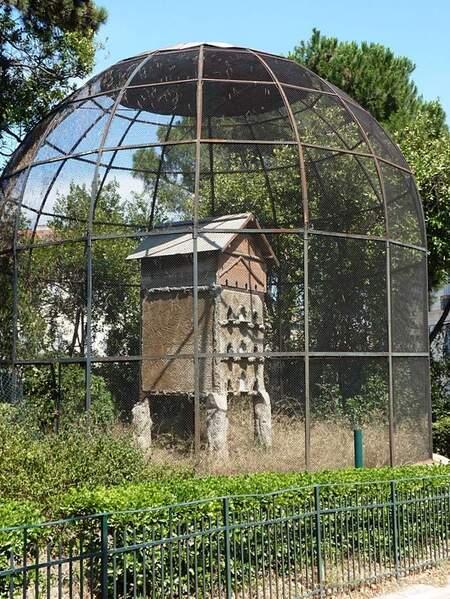 Marseille zoo volière (1)