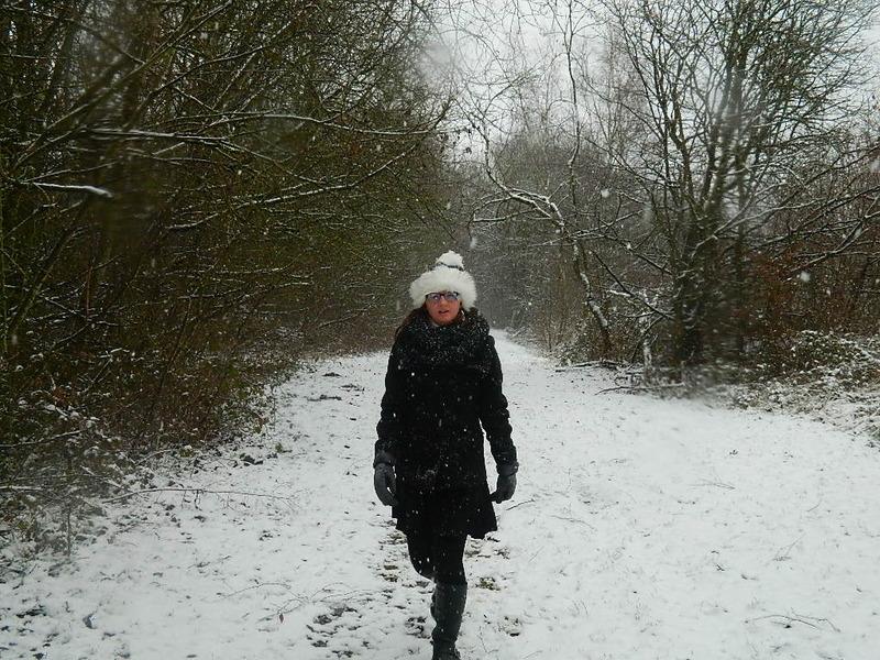 Flocons de neige dans le Nord