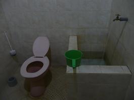 Vivre sans papier de toilettes, mais avec une douchette, c'est plus hygiénique, plus écologique et plus confortable