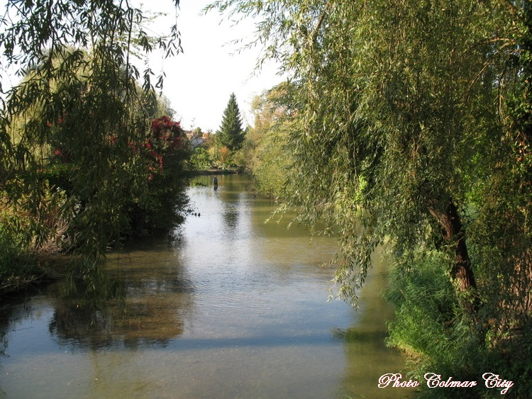 Biesheim (68) : Au bord du Giessen 4/4