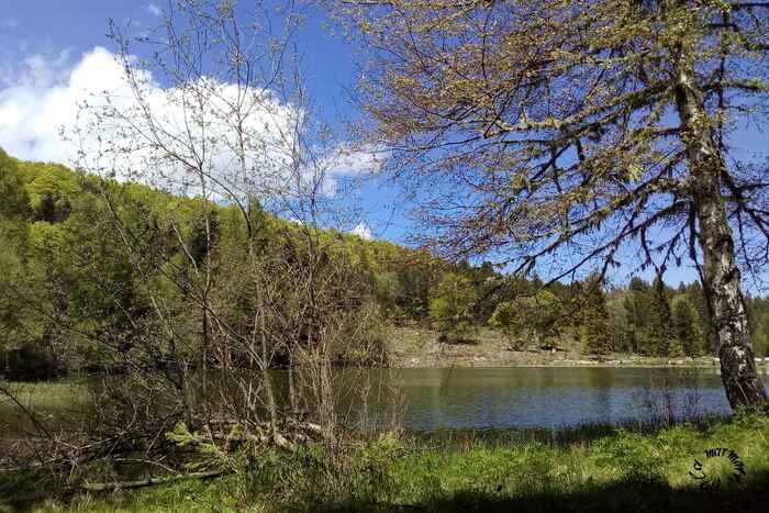 Un lac ...
