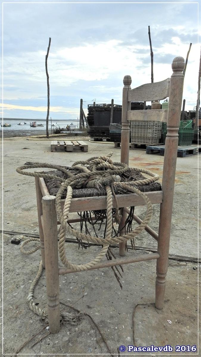 Balade à Claouey sur la presqu'île du Cap Ferret - Octobre 2016 - 4/10