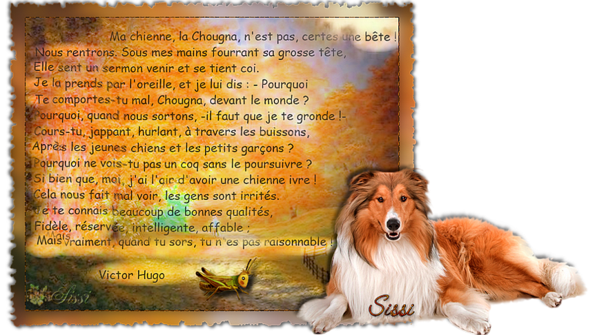 Mon Poème Préféré Chougna De Victor Hugo Sissi Douceur