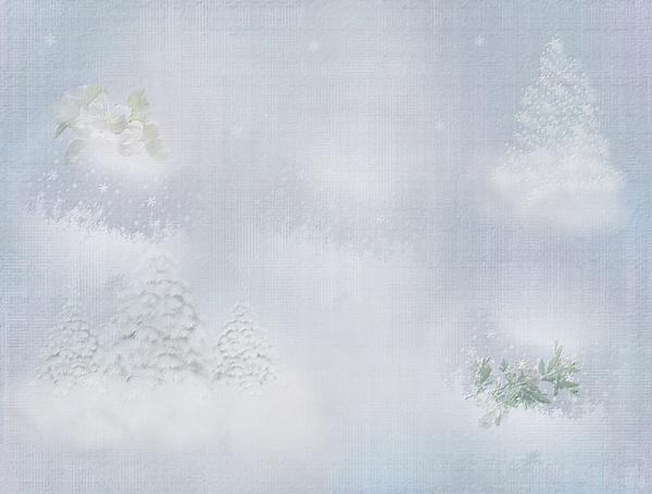 Textures hiver