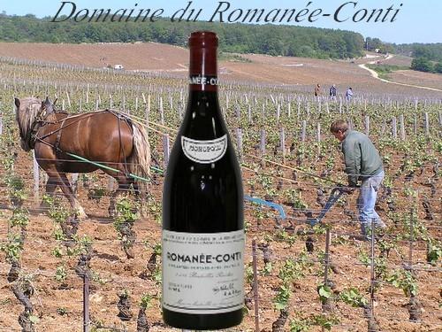 800px-Domaine de la Romanee Conti, Burgundy